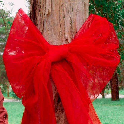 How to Tie Red Street Tree Christmas Bows
