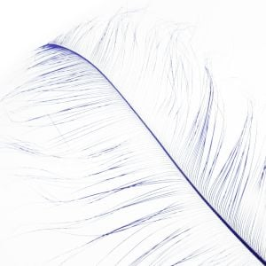 www.houseofadorn.com - Feather Ostrich Burnt Plume 60cm - Cobalt Blue