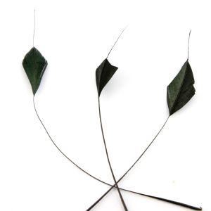 www.houseofadorn.com - Feather Stripped Coque Diamond Tail Bunch