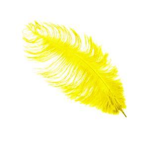 www.houseofadorn.com - Feather Ostrich Plume 30-40cm - Yellow