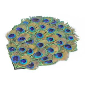 www.houseofadorn.com - Feather Peacock Pad - 16cm - Eyes (Trimmed)