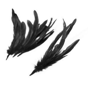 www.houseofadorn.com - Feather Coque Bunch of 6 (15-25cm) - Black
