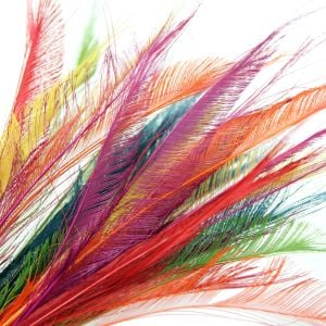 www.houseofadorn.com - Feather Peacock Sword (30-40cm) - Dyed Colours (Pack of 3)